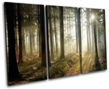 Woodland Forest Landscapes - 13-0767(00B)-TR32-LO